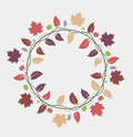Fall leaves background vector illustration of decoration Royalty Free Stock Photography
