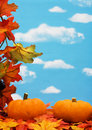 Fall leaves Border Royalty Free Stock Image