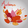 Fall leaves with color splash warm fall Royalty Free Stock Photos