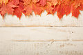 Fall leaves frame on whooden background Royalty Free Stock Photo