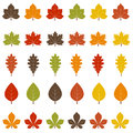 Fall leaves a set of colorful Royalty Free Stock Photo