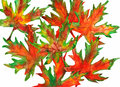 Fall leaves watercolor bright orange red green yellow and brown autumn with white background Stock Image