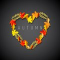 Fall in love autumn heart symbol leaves on dark background theme Stock Images