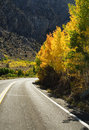 Fall Mountain Road Royalty Free Stock Photo