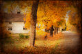Fall in the park houses and environment sweden texture conceptual image Stock Image