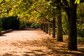 Fall in public park with typical autumn colors Stock Photo