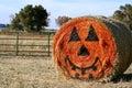 Fall Pumpkin Royalty Free Stock Photos
