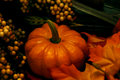 image photo : Fall - Pumpkin Arrangement