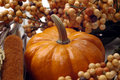 Fall - Pumpkin Arrangement Stock Photos