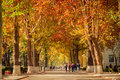 Fall road scene in college Royalty Free Stock Photo