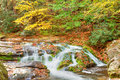 Fall roaring fork creek cascades through a lush forest and mossy boulders great smoky mountains national park tennessee Royalty Free Stock Photography