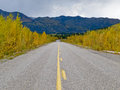 Fall at robert campbell hwy yukon territory canada yellow autumn colors highway in central Stock Image