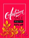 Fall sale background design with colorful paper cut autumn leaves. Vector illustration