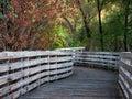 Fall Scene On Humbug Willow Creek Trail Bridge