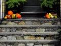 Fall Scene doorsteps Royalty Free Stock Photo