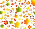 Fall seamless background Royalty Free Stock Images