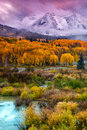 A Fall Snow At Sunrise Royalty Free Stock Photo