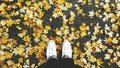 Fall time fashion