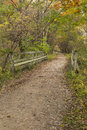 Fall trail scenic a hiking in the woods in early autumn Royalty Free Stock Photography