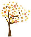 Fall tree with elements Royalty Free Stock Photo