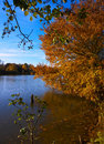 Fall tree by the lake Royalty Free Stock Photography