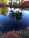 Fall water colors change of seasons in vermont Stock Images
