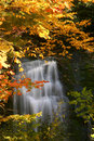 Fall Waterfall Stock Image