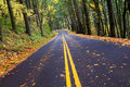 Fall winding forest mountain road Royalty Free Stock Photo