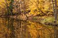 Fall Woods Water Scene Stock Photography