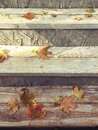 Fallen autumn maple leaves on the steps of a wooden staircase Royalty Free Stock Photo