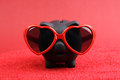Fallen in love black piggy bank with red heart sunglasses standing on red sand in front of red background Royalty Free Stock Photo