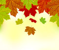 Falling autumn leaves background Royalty Free Stock Image