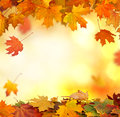 Falling autumn leaves natural background