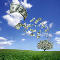 Falling dollar bills Royalty Free Stock Photo