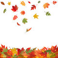 Falling Fall Leaves. Vector Royalty Free Stock Photo