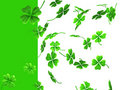Falling Shamrock Leaves Royalty Free Stock Photography