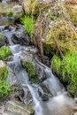 Falls on the small mountain river in a wood spring Stock Photo