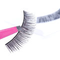 False lashes and pink pincers closeup on white background Stock Image