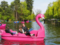 Families spend quality time on pleasure boats on the lake Royalty Free Stock Photo