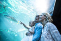 Familly looking at fish tank the aquarium Royalty Free Stock Image