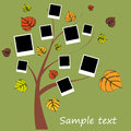 Family album on autumn tree with photos Stock Images