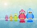 Family of birds Royalty Free Stock Photo