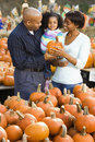 Family buying pumpkin. Stock Images