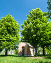 Family crypt cemetery with the tomb under the chestnuts Royalty Free Stock Photography