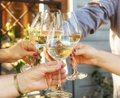Family of different ages people cheerfully celebrate outdoors with glasses of white wine, proclaim toast Royalty Free Stock Photo