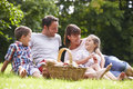 Family Enjoying Summer Picnic In Countryside Royalty Free Stock Photo