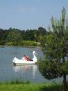 Family enjoying swan pedal boat at Woburn Safari Park, UK Royalty Free Stock Photo