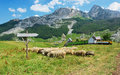 Family farm on countriside view of near rikavacko lake in komovi mountains montenegro Stock Photography