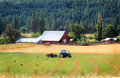 Family farm new hay crop growing in foreground of a red barn blue tractor working to bale hay and a forest in the background Stock Photo