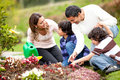 Family gardening Royalty Free Stock Photo